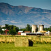 Small photo of American Fork Pastoral