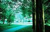 Summers at Piedmont Park