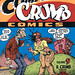 "The Complete Crumb Comics Vol. 9: ""R. Crumb Versus the Sisterhood"" by Robert Crumb (2009 Softcover Ed.)"