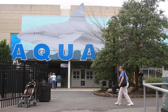 Header of Adventure Aquarium