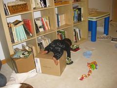 Milo Scaling a Box