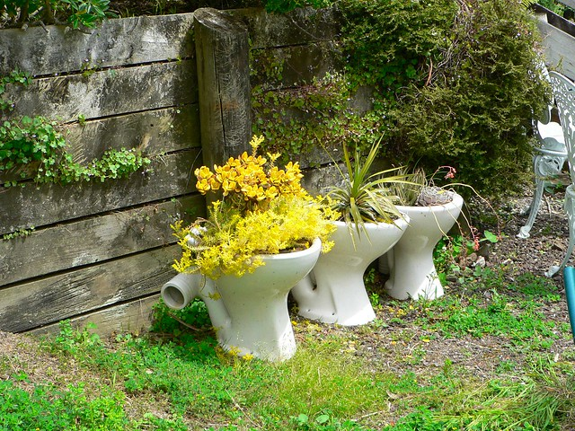 Potty plants flickr photo sharing for Creative garden design 805