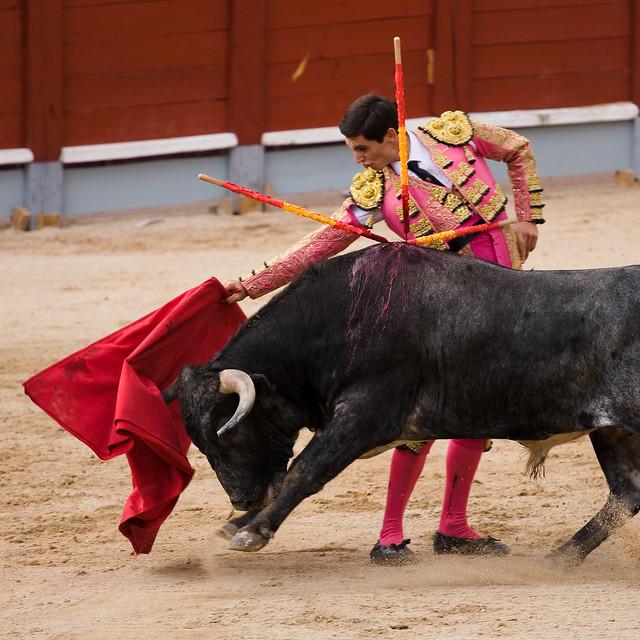 Corridas de toros - Chinchón 2009-7
