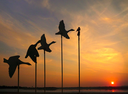 sunset sculpture lake broken birds metal salt cyprus saltlake sparrow tekke larnaca larnaka κύπροσ λάρνακα αλυκή κυπροσ λαρνακα constantineh