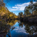 Serenity along Putah Creek by Dave Heaphy