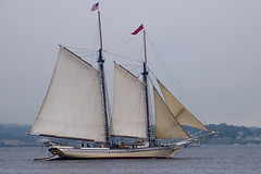 sail, sailboat, sailing ship, schooner, vehicle, ship, sea, windjammer, thames sailing barge, training ship, mast, lugger, galeas, manila galleon, sloop-of-war, tall ship, watercraft, boat, brig, brigantine,