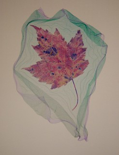 Red Maple Leaf : Polaroid emulsion lift by John Fobes