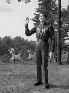 Magic Forest Staff