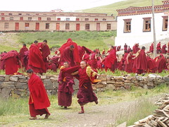 people, temple, history, monk,