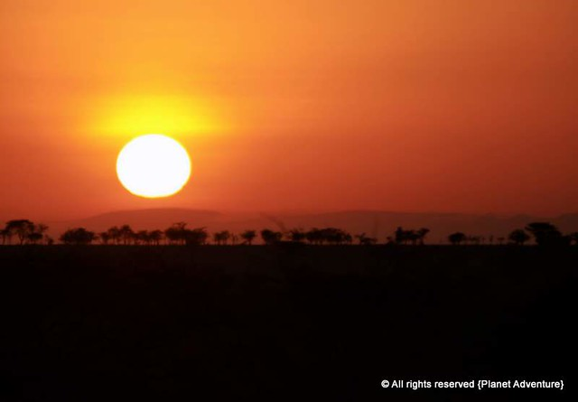 Sunrise - Serengeti National Park - Tanzania - Africa