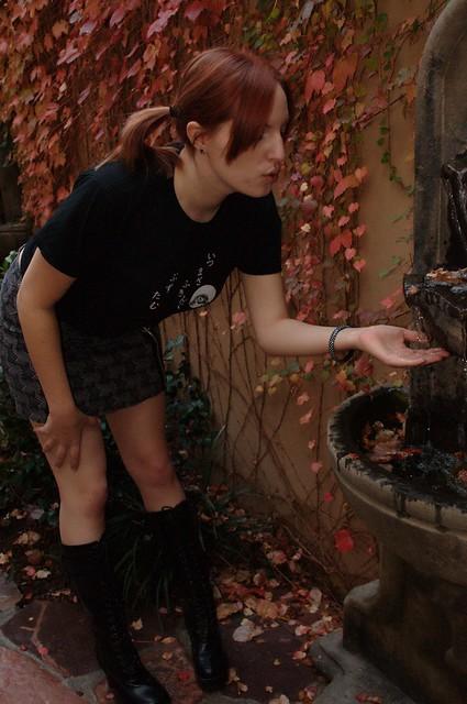 Tanuki fountain