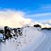 Snow - Lane 1