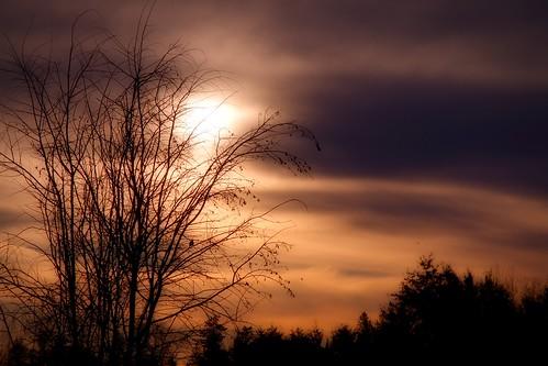 landscape sunset dusk wintersunset outdoor goldensky aldergrove february7sunset