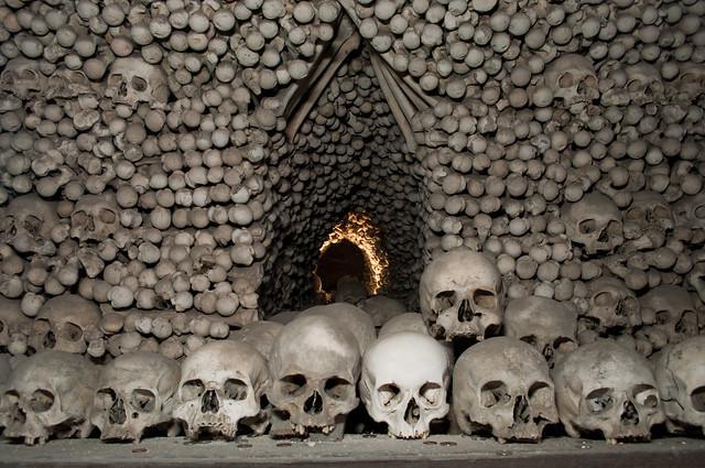Pile o' Bones | Flickr - Photo Sharing!