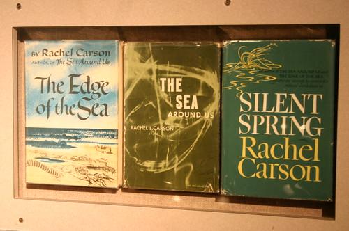 27. september er det et halvt århundre siden Rachel Carson utga «The Silent Spring», som mange mener var utgangspunktet for den moderne politiske miljøbevegelsen. (Foto: Ryan Somma/Flickr)