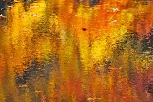 autumn usa reflection fall water colors newjersey october ripple nj sigma autumncolors mountainside 2009 gardenstate echolake shimmer unioncounty nikond60 platinumheartaward sigma120400 sigma120400mm sigma120400mmapodghsm hjhipster