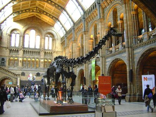 6 famosi musei gratuiti a londra dal british al natural