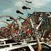 1995 - Motorola - Tour de France - bike of Fabio by Hennie Kuiper