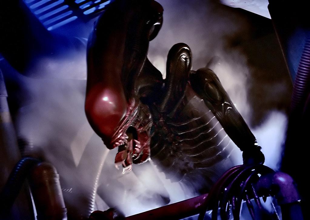 An alien bitten off by a member