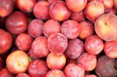 plant(0.0), damson(0.0), produce(1.0), fruit(1.0), food(1.0), myrciaria dubia(1.0),