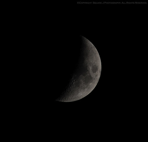 moon lune mond dallas backyard nikon luna lua carrollton lunar d300 maan backyardview луна dallastexas pleasereadprofile waxinggibbousmoon sigmadg donotusewithoutpermission carrolltontexas nikond300 texasmoon farnorthdallas texasluna carrolltonmoon dallasmoon ©copyrightsquarejphotographyallrightsreserved texaslune lunarviews dallasluna sigma150mm–500mm