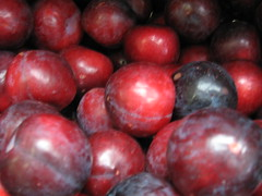 plum, berry, frutti di bosco, produce, fruit, food, nectarine, cranberry,