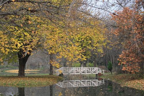 "park autumn fall canon landscape macedonia skopje canon1000d ""flickraward"" cuckove"