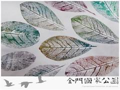 102-民宿賣店經營輔導-0305-07