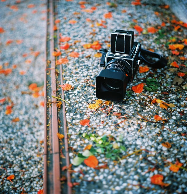 The HASSELBLAD 503CW