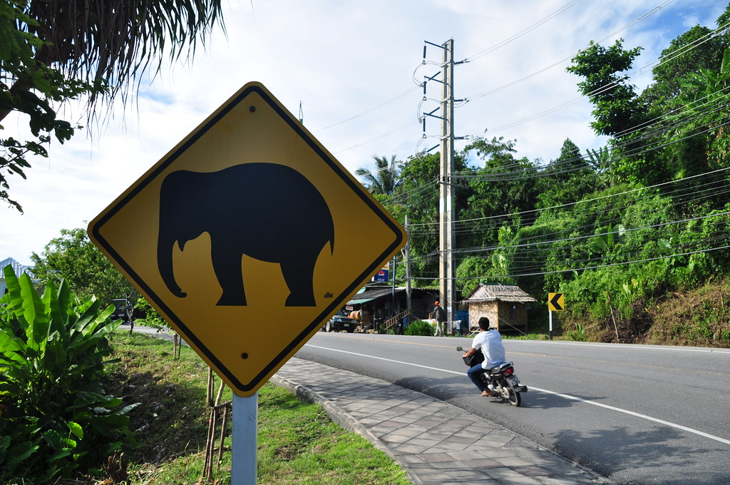 Beware of elephants