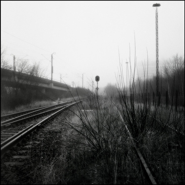 Misty morning by the tracks #1 (Ilford HP5 Plus 400)