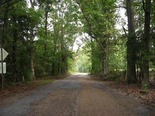 Road to Emerald Mound, Natchez Trace Parkway, Mississippi (14)