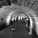 Small photo of Templar Crusader Tunnel