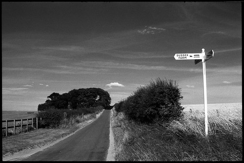 The Road To Sussex Farm
