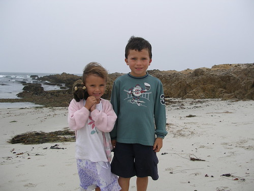Buddy and Friends at California's Asilomar State Park