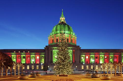 World Tree of Hope - San Francisco City Hall   The World ...  San Francisco City Hall Trees