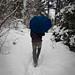 "7/365 ""Walking in the Snow"" by Kbarnoff"
