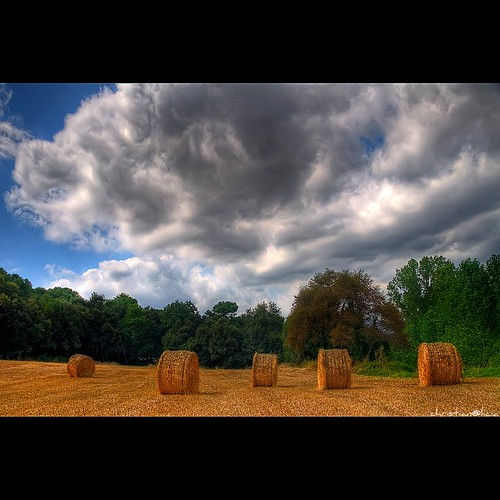 trees summer clouds landscape nikon arboles sigma catalonia arbres nubes fields catalunya camps 18200 hdr campos nuvols paisatge bracketing balas catalogne d90 specialtouch platinumheartaward