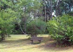Bench at Rozar Park