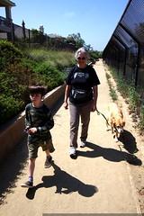 brothers walking the dog with grandma anna    MG 1655