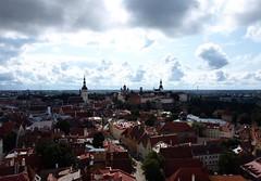 Tallinn seen from the top of S. Olaf Church