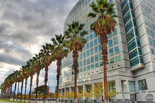 california sanjose officebuilding headquarters palmtrees adobe hdr adobeheadquaters