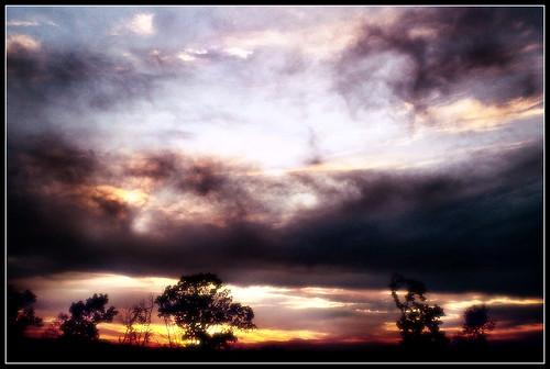 africa trees light sunset sky sun tree sahara sunrise fire heaven skies god hell calm rays epic