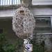 Birdhouse Social 2010