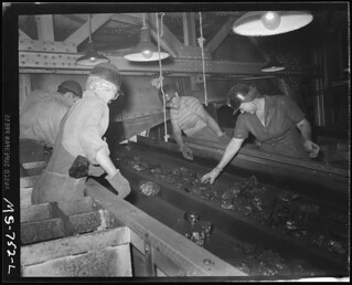 Women Pick Foreign Matter Out of Coal as It Is Carried on Conveyor Through Tipple