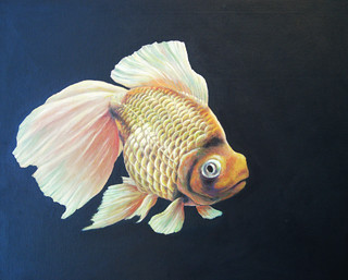 goldfish,finished