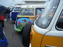 Row of VW vans