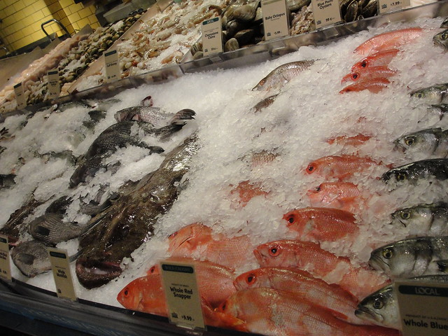 whole foods fish market explore monkey mike 39 s photos on