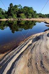LANDSCAPE SURINAM AMAZONE SOUTH-AMERICA