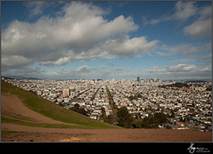 Bernal Picks-0114